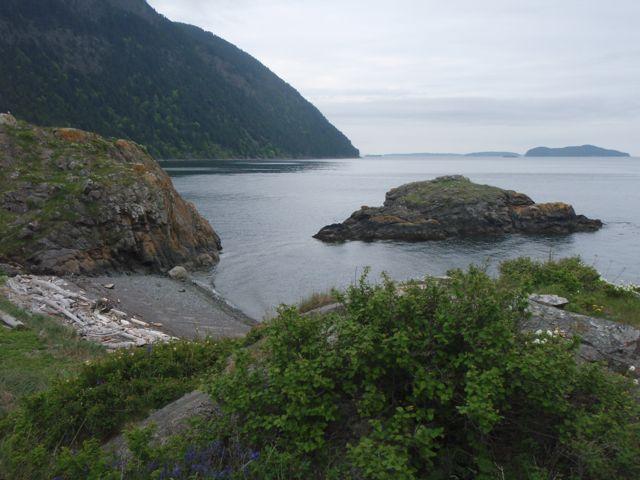 Lummi Island-8