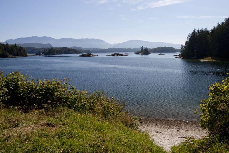 View from the beach on Village Island. Photo © Katya Palladina