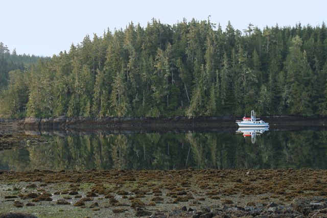 Boat anchored in the bay south of Mound Island.